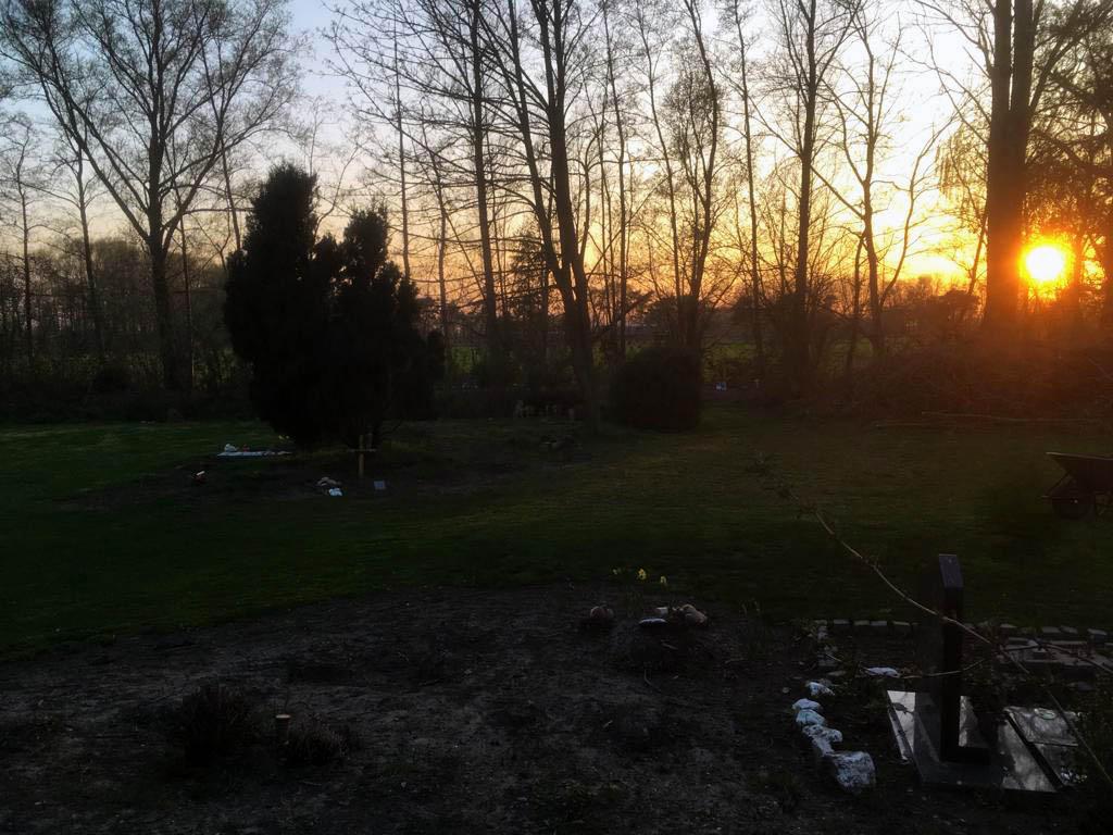 Dierenbegraafplaats De Wilgenhof